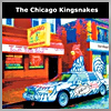 CHICAGO KINGSNAKES